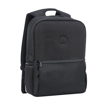 Delsey LAUMIERE 2-Compartment Laptop Backpack 15.6